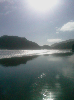 Bethells Beach, located in sunny West Auckland, New Zealand